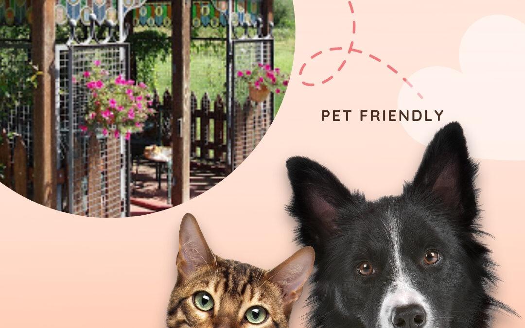 Nuestro hotel rural tiene un lugar especial para tu mascota-Pet Friendly